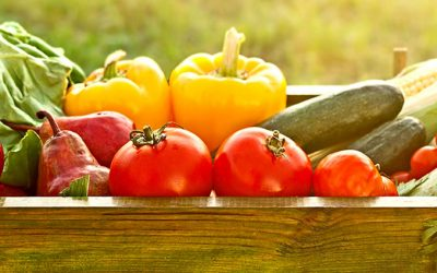 Alimentação orgânica – inspiração para o bem-estar