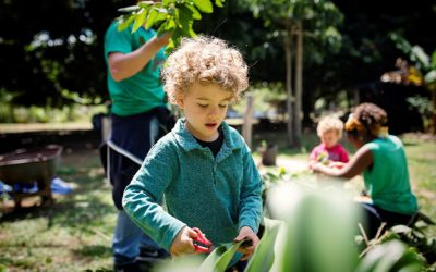 Uma experiência significativa para as crianças em meio à natureza