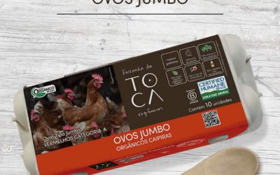 Toca lança ovos Jumbo em estojos 100% biodegradáveis