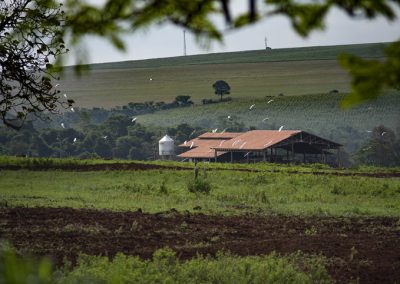 Fazenda da Toca