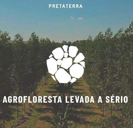 Sistema Agroflorestal com foco em citricultura na Fazenda da Toca
